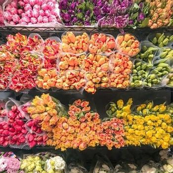 Jolies fleurs, belle journée. Dans quelques jours, des nouveautés (très) fleuries arriveront sur notre site ! 🌸  #cheminsblancs #fsc #nouvelleco #spring